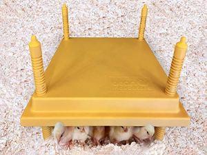 Titan Incubators – Plaque electrique pour poussins – 30×30 cm