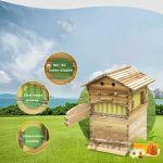 TWW Boîte À Abeilles À Écoulement Automatique, Ensemble Complet De Ruche en Cire d'abeille, Dispositif De Ruche en Nid d'abeille À Écoulement Automatique, Outil D'élevage D'abeilles