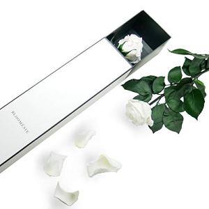 BLOOMÉSIE Rose Infinity Rose à longue tige, Rose éternelle, boîte à fleurs, Rose blanc, avec boîte-cadeau