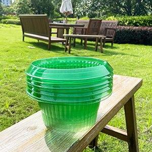 VDYXEW Lot de 20 protections anti-escargots pour vos plantes de salade et chou – Protection contre les limaces sans produits chimiques – Col en plastique