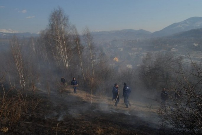 incendiu vegetatie (2)