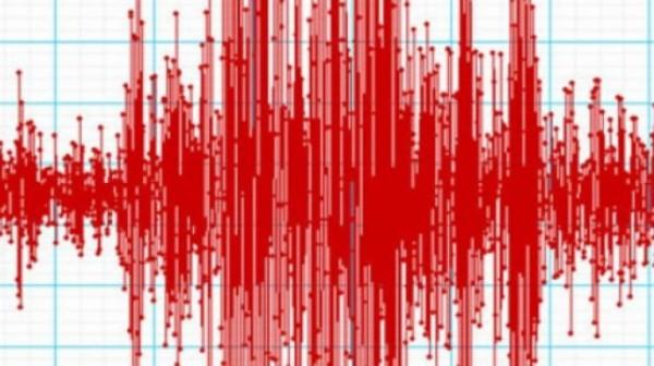 Seismele nu se mai opresc. Un nou CUTREMUR a avut în România, în această dimineaţă