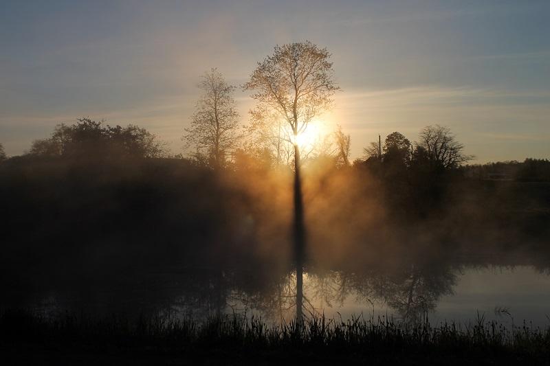 Golden Hour, morning light, sunrise, pond, Nova Scotia,