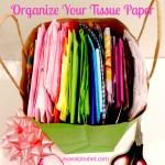 Tissue Paper Organization