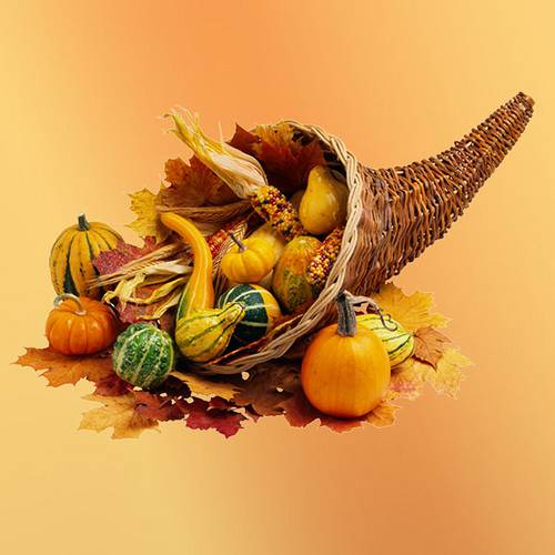The History Behind The Thanksgiving Cornucopia Avas Flowers