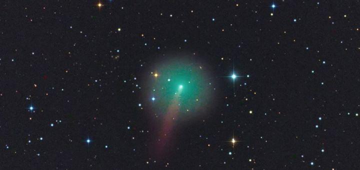 Cometa C2019 Y4 (Rolando Ligustri)