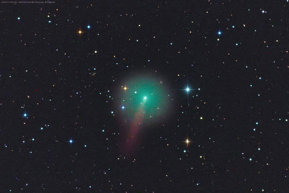 cometa C2019 Y4 Rolando Ligustri