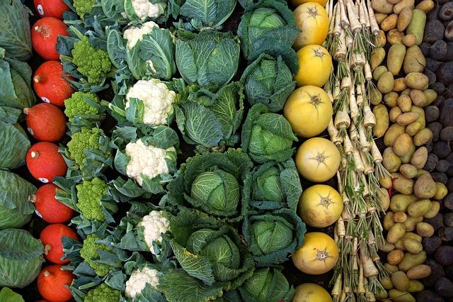 Verduras de diversas clases