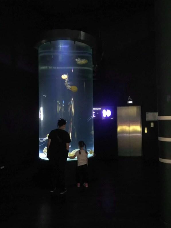 Tube aquarium de 5600 litres