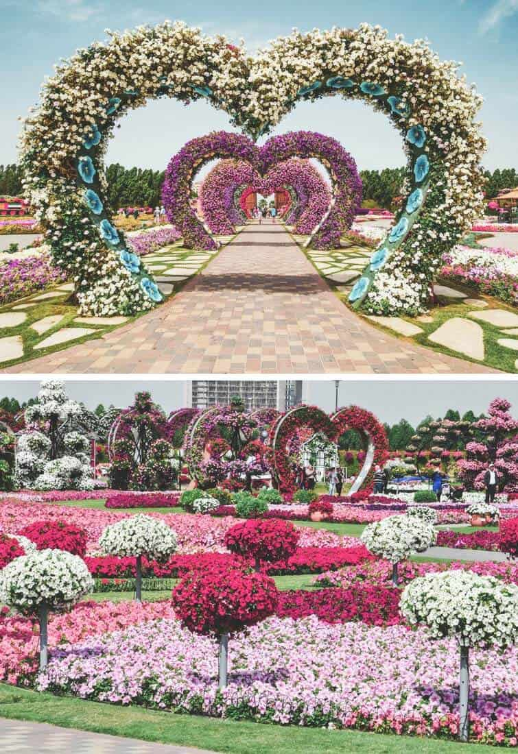 The Dubai Miracle Garden! See our list of the top 10 things to do in Dubai on Avenlylanetravel.com #avenlylanetravel #dubai
