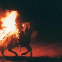 Le cheval de feu