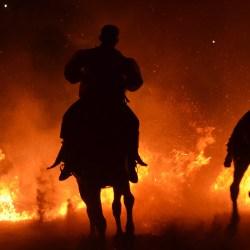 Spectacle-equestre-les-chevaux-de-feu-D70_8062