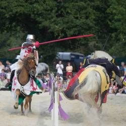 spectacle-equestre-chevalerie-tournoi-10838064_10152636005043315_610416767305728734_o