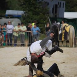 spectacle-equestre-chevalerie-tournoi-10869388_10152636004608315_6220186255960287586_o