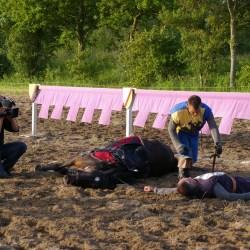 dressage-chevaux-cascades-télévision-tournageIMGP3710