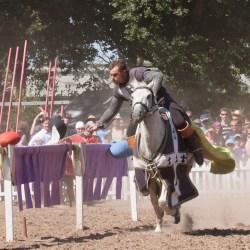 spectacle-equestre-chevalerie-ranrouet-2016-petit-bleus-photos-img_0602