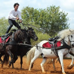 spectacle-equestre-2019-plesse-IMG_0101