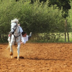 spectacle-equestre-2019-plesse-IMG_0152