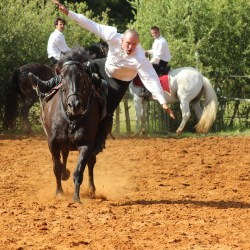spectacle-equestre-2019-plesse-IMG_0186
