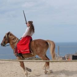chevalerie-moyen-age-P1520168