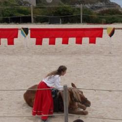 chevalerie-moyen-age-P1520367