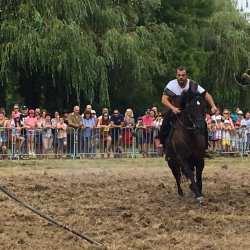 spectacle-equestre-2020-les-celtes-AG-Divino-Aventureaugalop-14