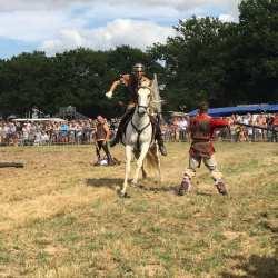 spectacle-equestre-2020-les-celtes-AG-Divino-Aventureaugalop-21