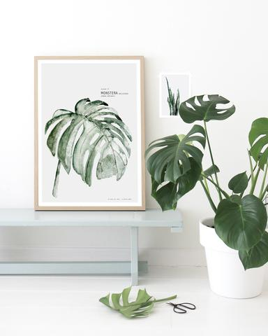 affiche-vegetal-feuille-palm-decoration-mural-aventuredeco
