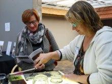 Candida van Nugteren heeft een van onze belangrijke sponsors, 'Opticiën Zeilstra' uitgenodigd om te zien hoe hun gestylleerd logo gebrandschilderd kan worden.