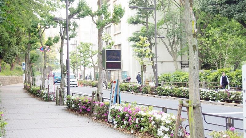 Tokyo / Journal de bord – Ueno et Asakusa