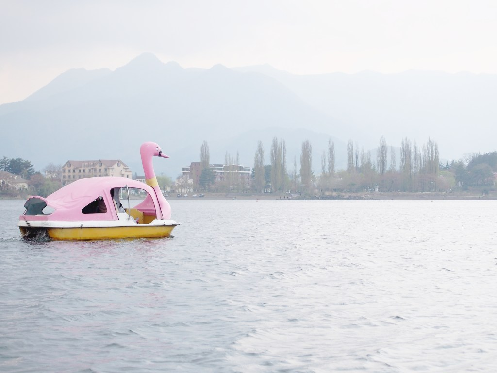 Tokyo / Journal de bord – Le lac Kawaguchiko et le Shibazakura festival