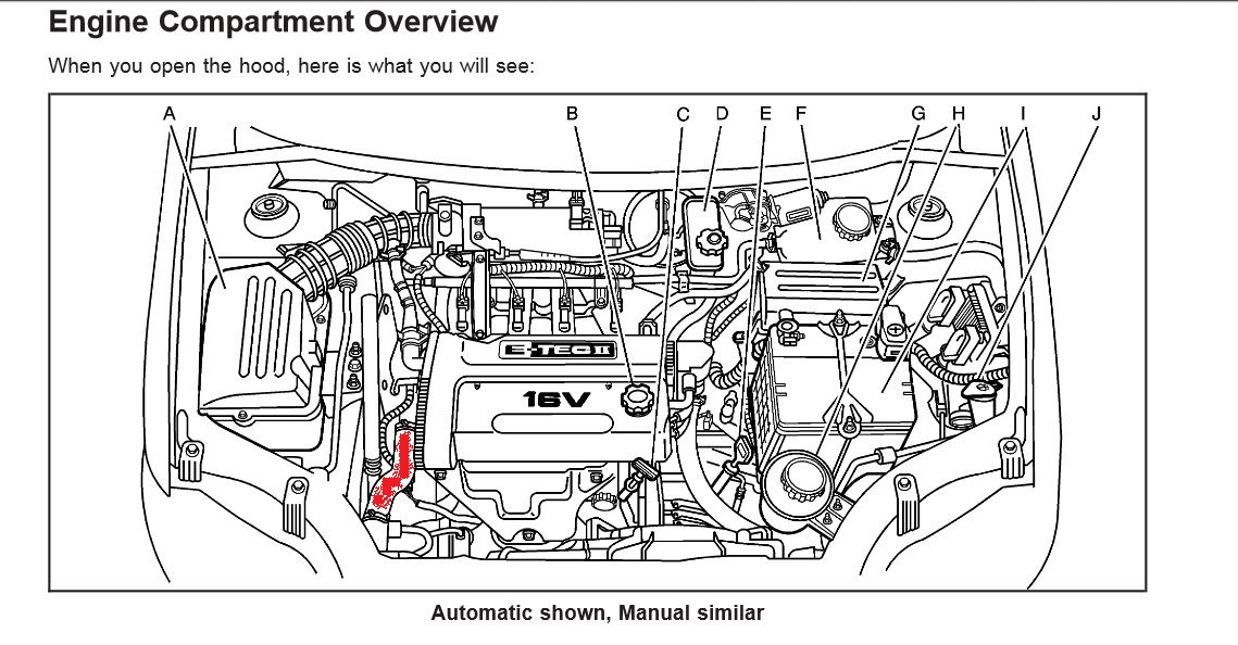Chevy Aveo Engine Diagram, Chevy, Free Engine Image For