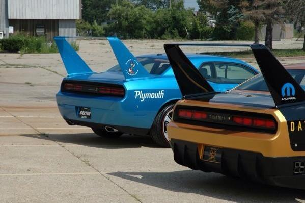 I think they look great from the back  the wing looks like it belongs there.