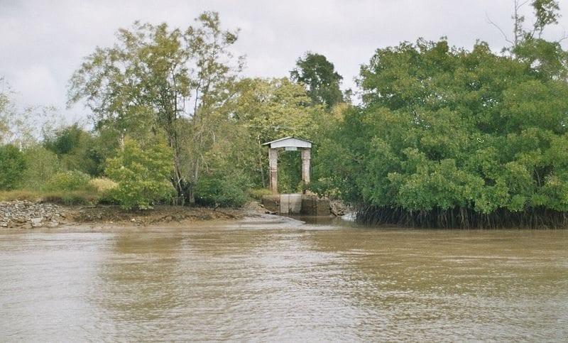 Berlijn Plantation, Commewijne, Suriname. Public domain photo by Brokopondo