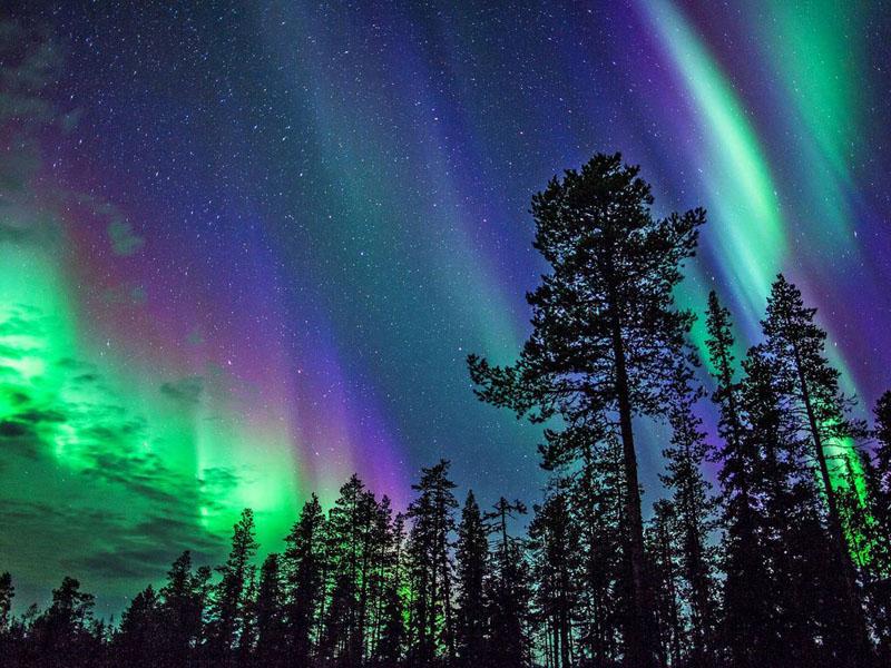 Northern Light Igloos