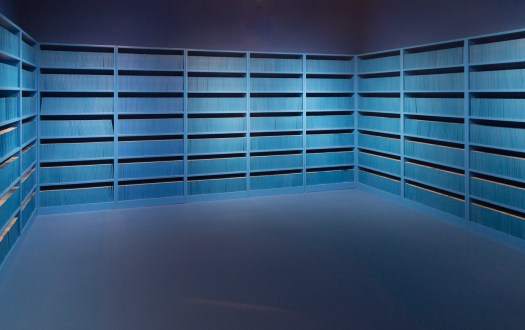 polit-sheer-form-library identical empty books