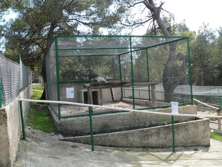 Fauverie Mont-Faron Toulon