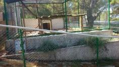 16 bis, Serval