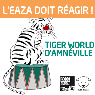 fb_tigerworld_profil
