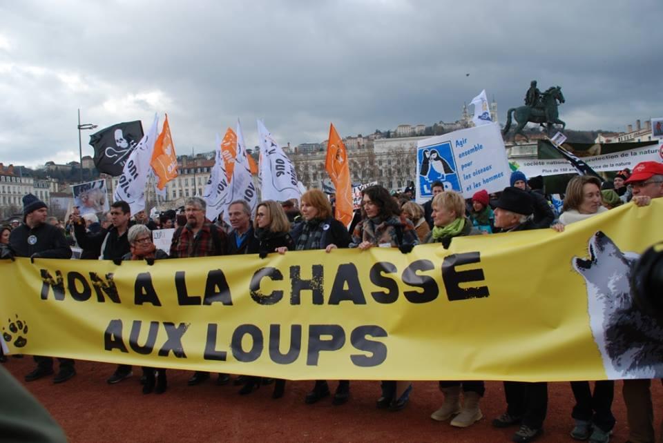 Soutenez AVES France pour la conservation des grands prédateurs en France, contre les spectacles avec animaux, la captivité...