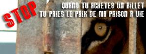 photo : https://www.facebook.com/pages/La-France-dit-STOP-aux-cirques-avec-animaux/981028171928990