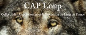 CAP Loup
