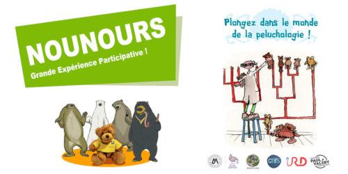 Participez à une grande expérience participative sur les ours en peluche !