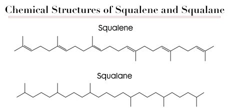 chemical structure squalene squalane
