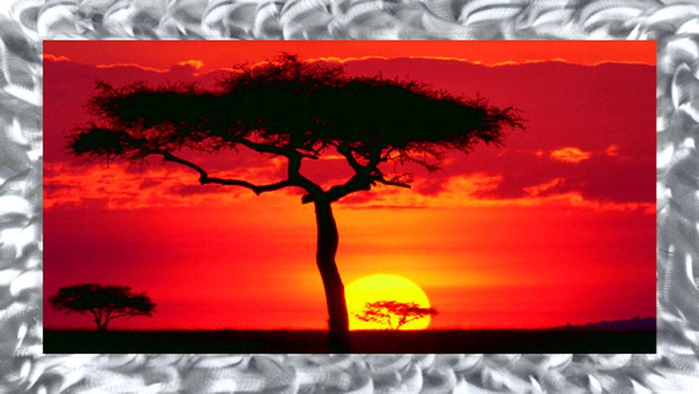 Masai Mara Plains Kenya Artwork  Paintings