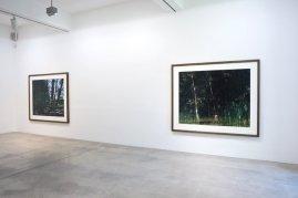 Galerie Nikolaus Ruzicska - Axel Hütte