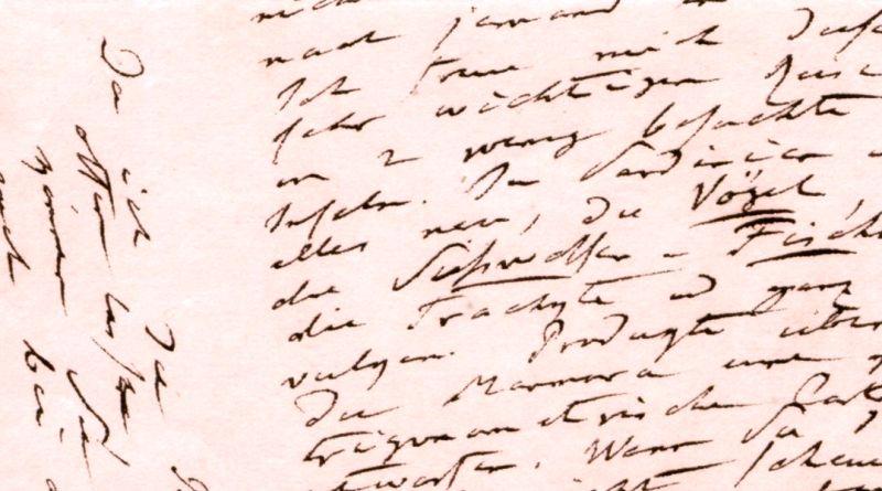 Briefwechsel mit Franz Julius Ferdinand Meyen