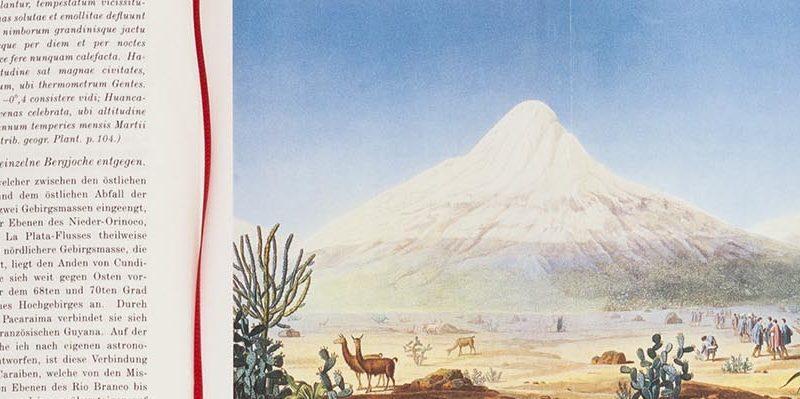 Seite 96 und Farbtafel 1 der Neuauflage von Humboldts Ansichten der Natur, Die Andere Bibliothek 2019