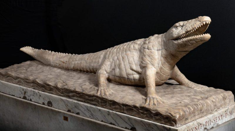 Coccodrillo, Vatikanische Museen – Museo Pio Clementino