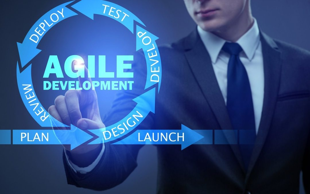 The Agile Product Owner: How does a product owner bring value to the software development process?